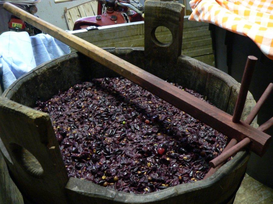 Производство на вино при домашни условиях
