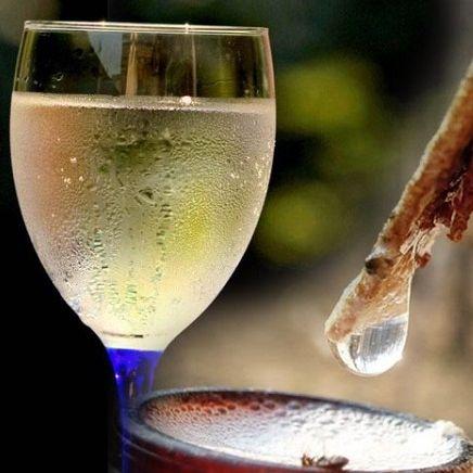 Рецепт приготовления вина из березового сока