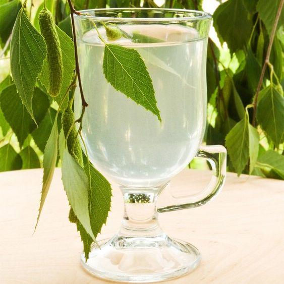 Рецепт приготовления самогона из березового сока