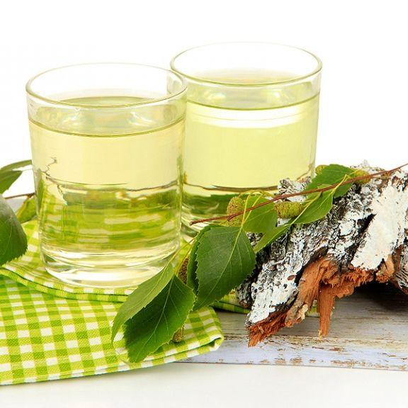 Рецепт приготовления самогона на березовых бруньках