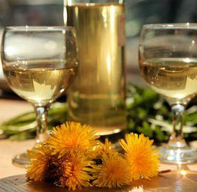 Рецепт приготовления вина из одуванчиков