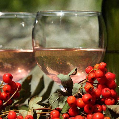 Рецепт приготовления вина из рябины
