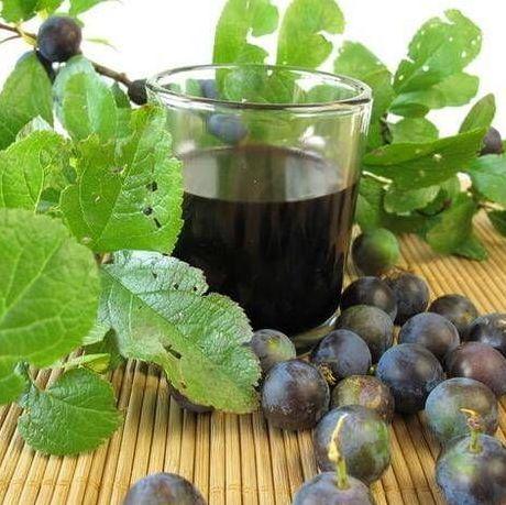 Рецепт приготовления вина из терна